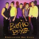 barrioboyz1993